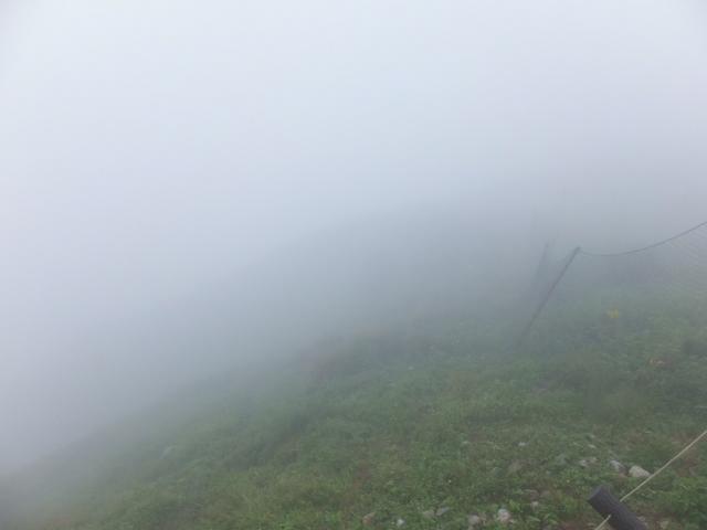 霧の中を散策