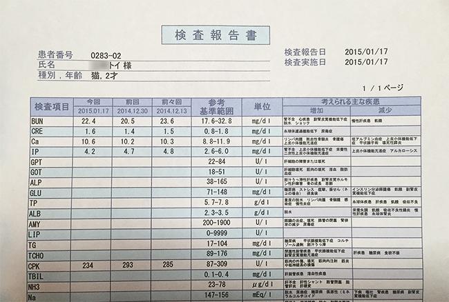 blog_000004738.jpg