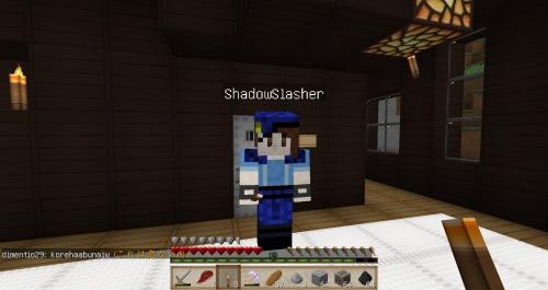 shadowslasherhouse26.jpg