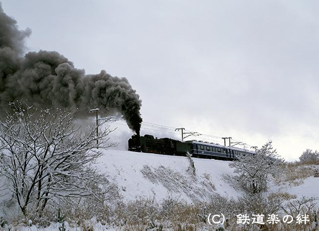920201東長原