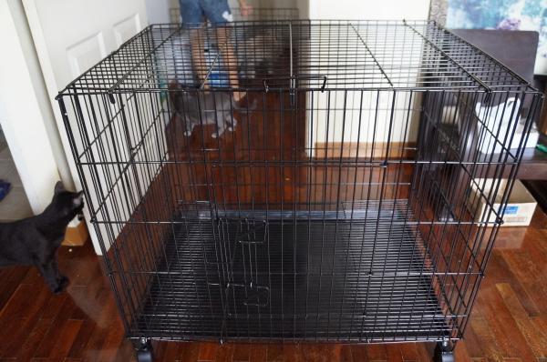 diy cage 1