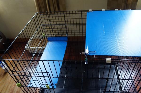 diy cage 5