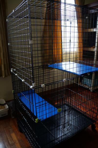 diy cage 6