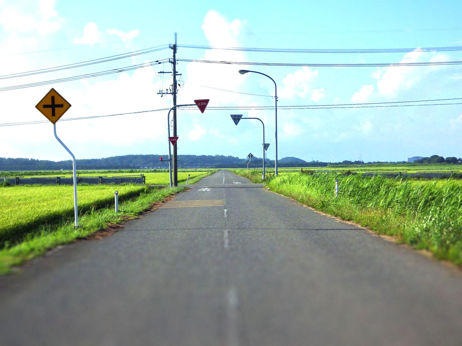 USER3550-tiltshift.jpg