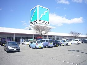 ku_yamazawa_s.jpg
