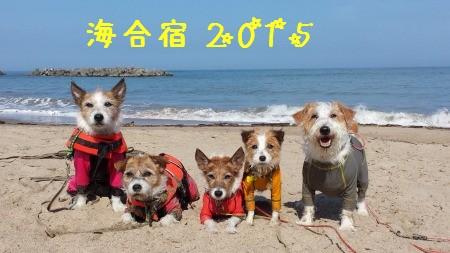 20150720_152003.jpg