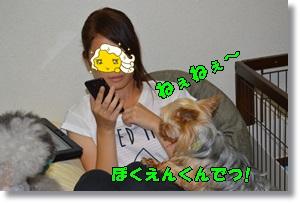 DSC_0634.jpg