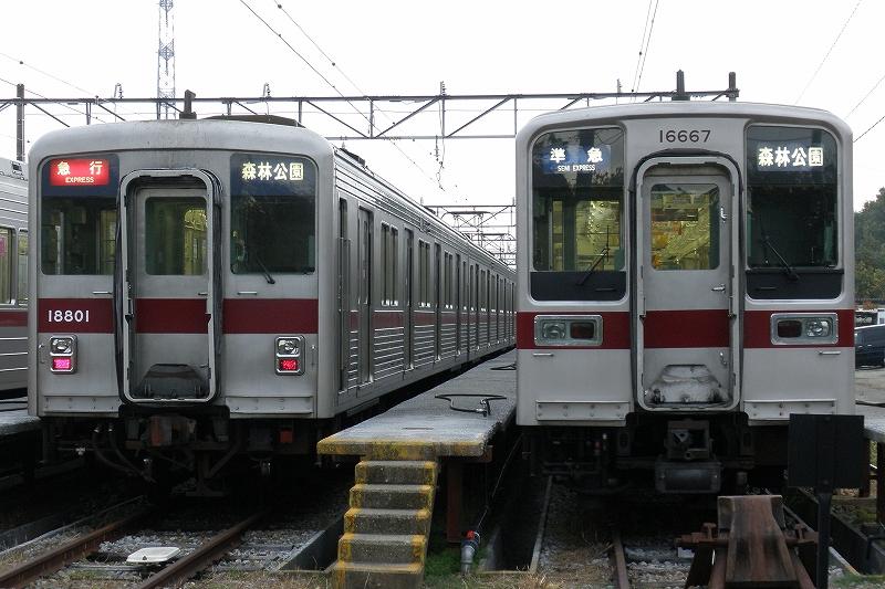 11801F 11667F