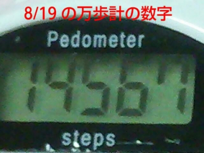 2015081904