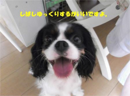 04_convert_20150803201114.jpg
