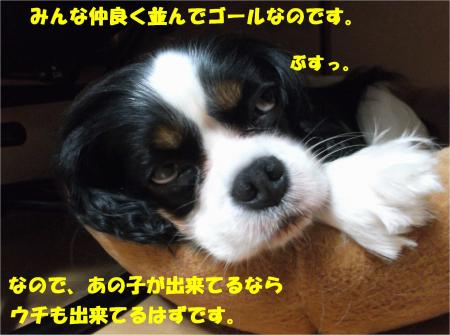 07_convert_20150804191512.jpg