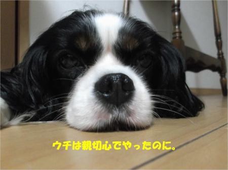 07_convert_20150805184259.jpg