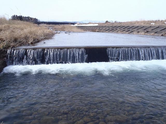 2015年3月保野川下流部