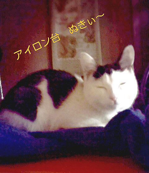 2015-02-18-17-43-49_deco.jpg