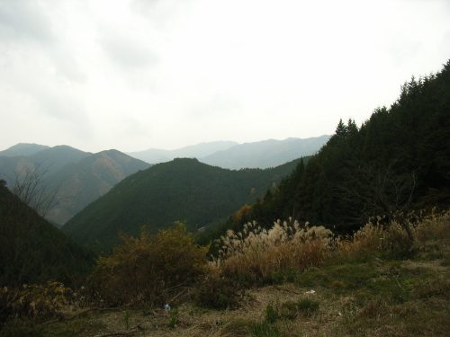 awakura270212a.jpg