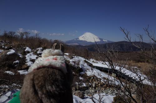 富士山だね~♪