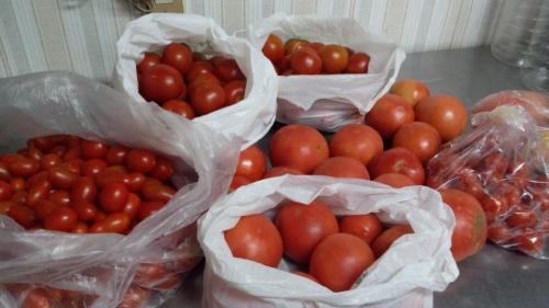 2015-7-19トマト