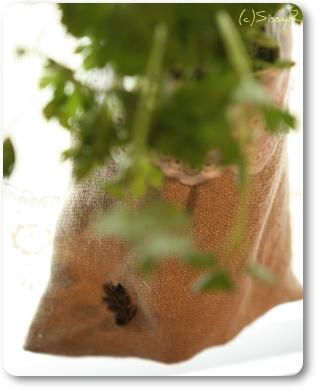 plantbag01d.jpg
