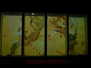 aquarium11.jpg