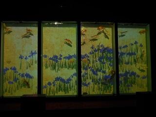aquarium12.jpg