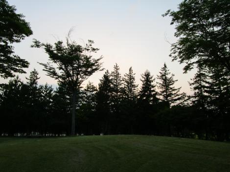 夏の夕方散歩