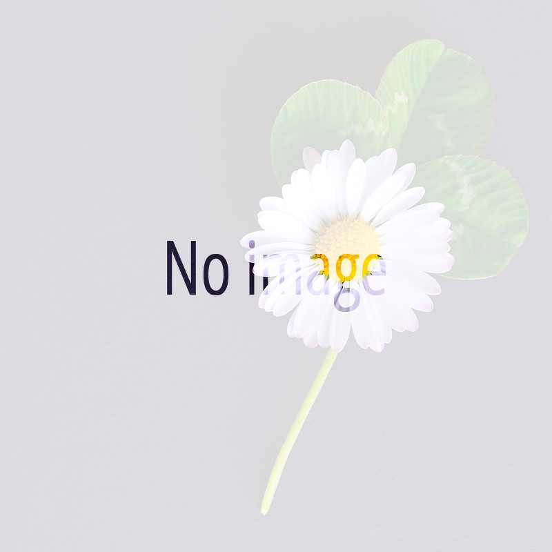 no-image-photo