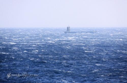 荒れる駿河湾