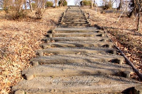 階段上ろう♪