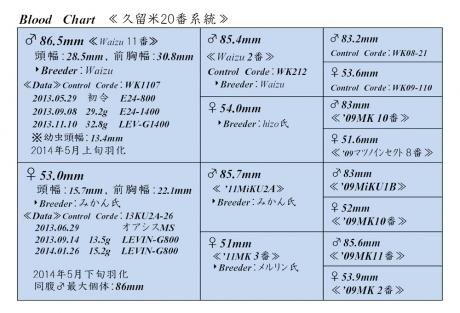 久留米20番血統構成表