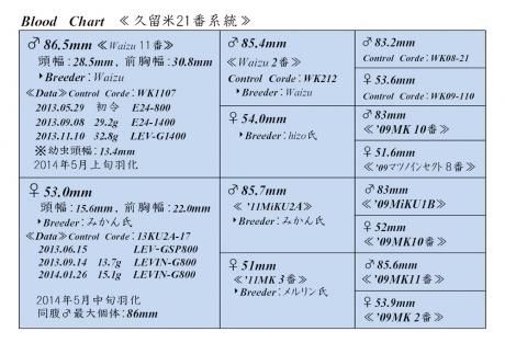 久留米21番血統構成表