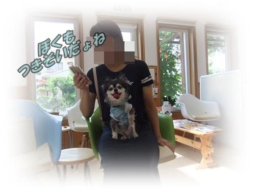 2015_0819moko愛の受診0002