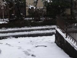 雪20150130