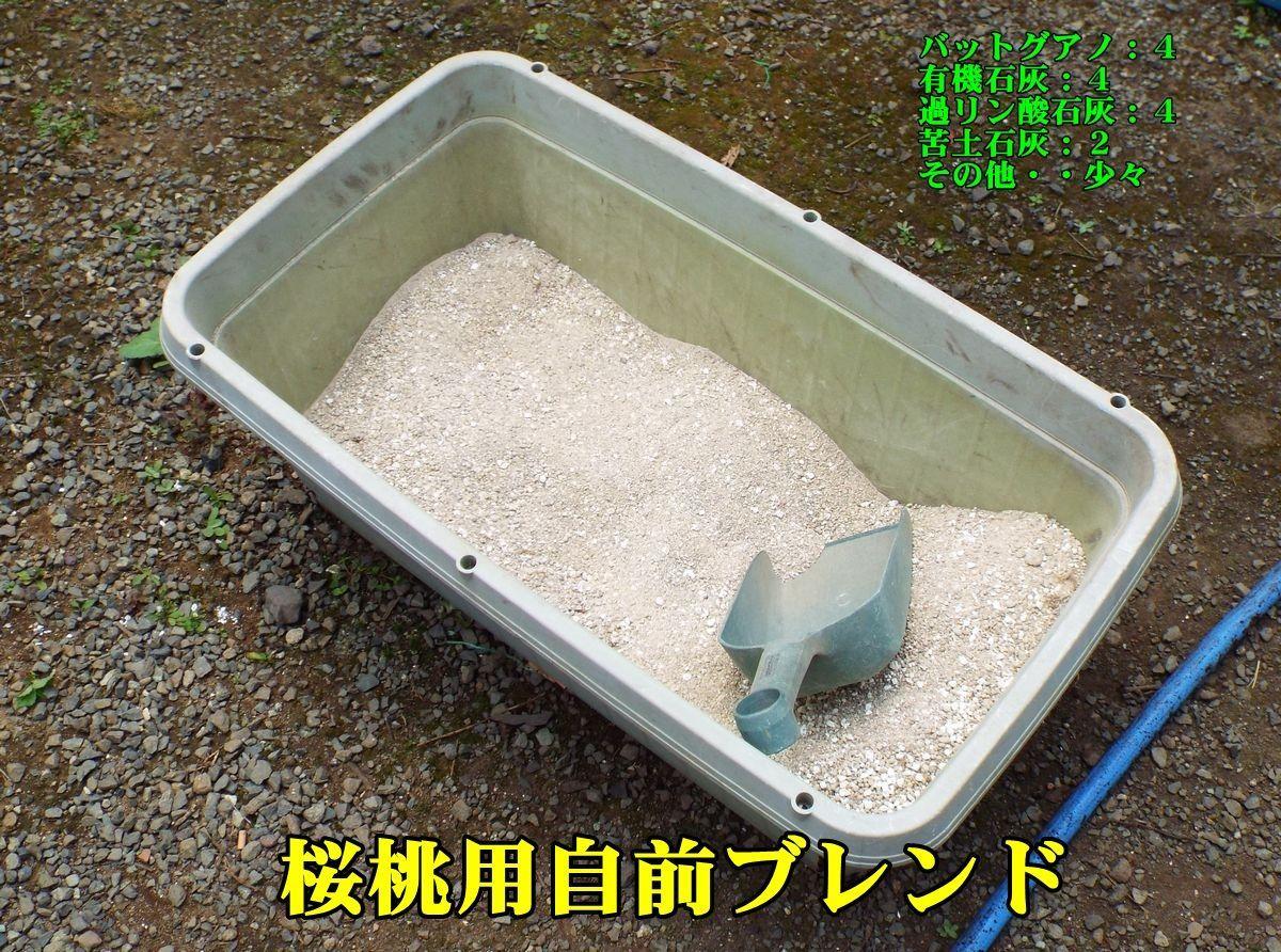 1haigou150728_006.jpg