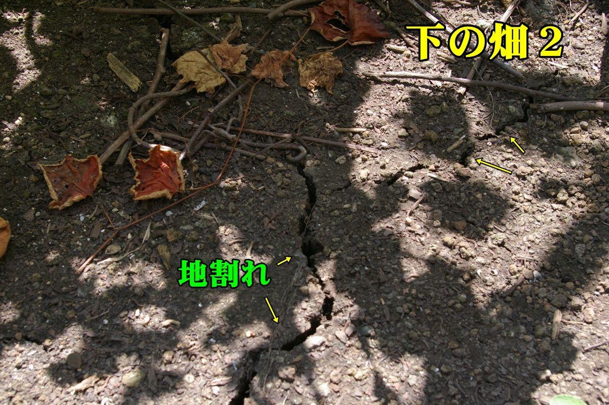 1jiware150810_006.jpg