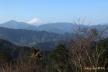 冨士、高尾山山頂