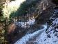 ヤビツ峠への登山道