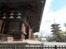 東寺・金堂と五重塔