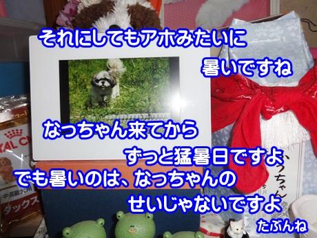 0802-07_2015080217005047c.jpg