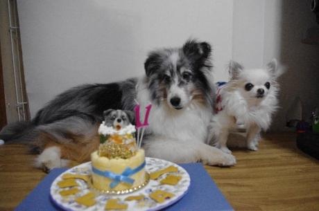 ウィリアムとくりとケーキ
