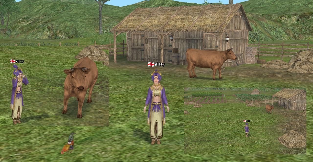 farm201502201.jpg