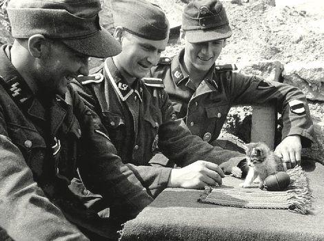 20. Waffen-Grenadier-Division der SS