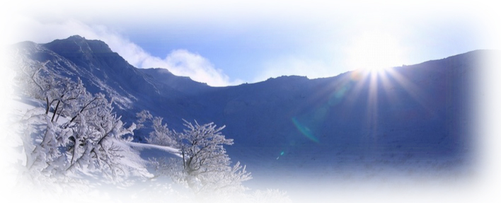 冬 Degu デグー