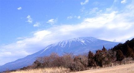 デグー富士山