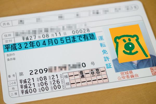 P8113092-4.jpg