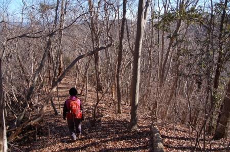13津室山への尾根