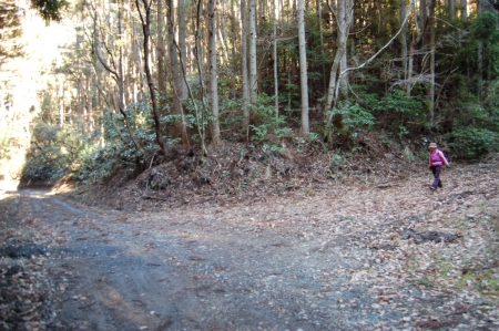 27林道合流