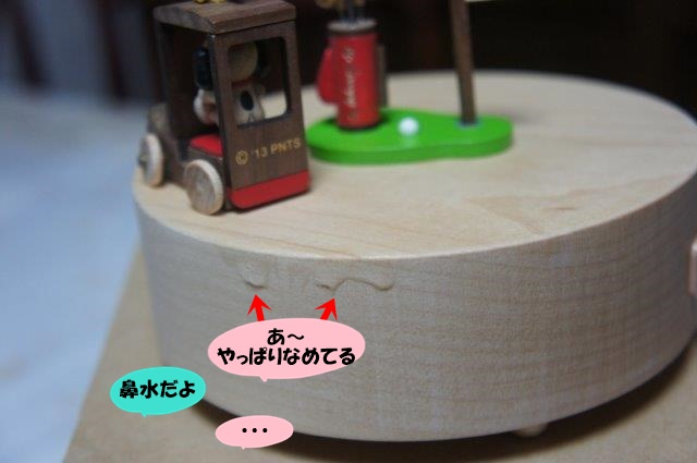 DSC07338.jpg
