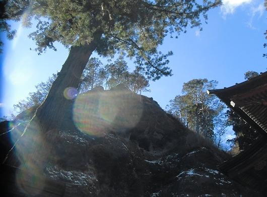 榛名の木と岩と空