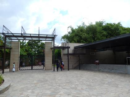 シンガポール2014.11植物園