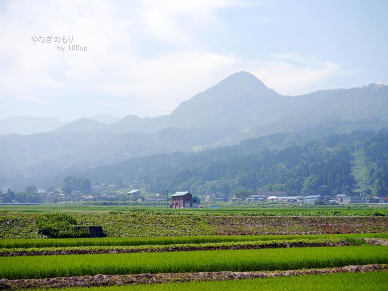 新潟県景色
